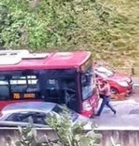 autobus pedone roma