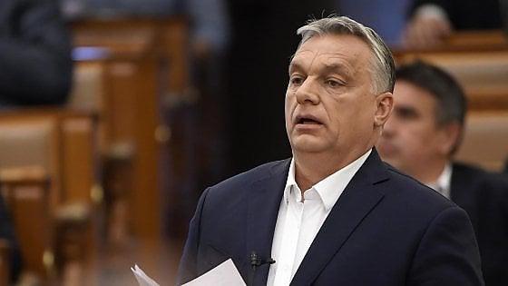 Orban trans
